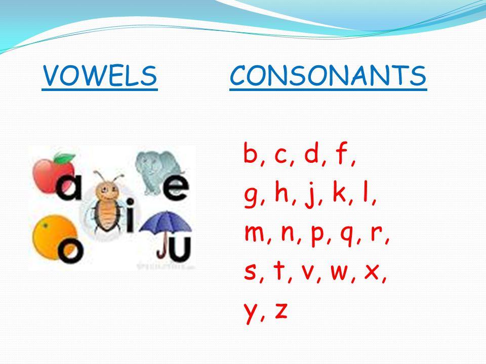 VOWELSCONSONANTS b, c, d, f, g, h, j, k, l, m, n, p, q, r, s, t, v, w, x, y, z