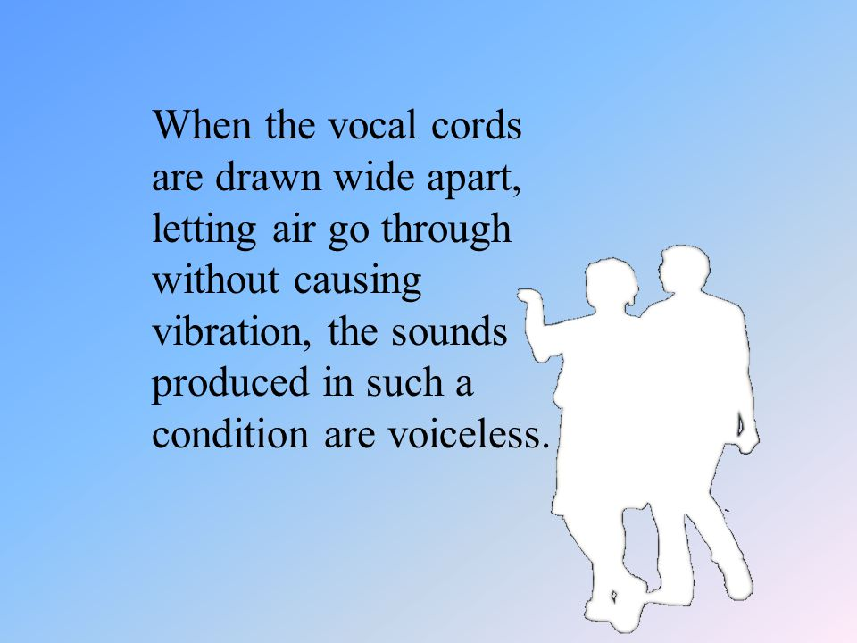 The pharyngeal cavity: Vibration of the vocal cords results in a quality of speech sounds called voicing, which is a feature of all vowels and some co