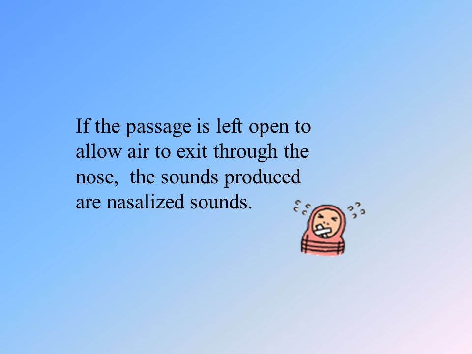 The nasal cavity The nasal cavity is connected with the oral cavity. The soft part of the roof of the mouth, the velum, can be drawn back to close the
