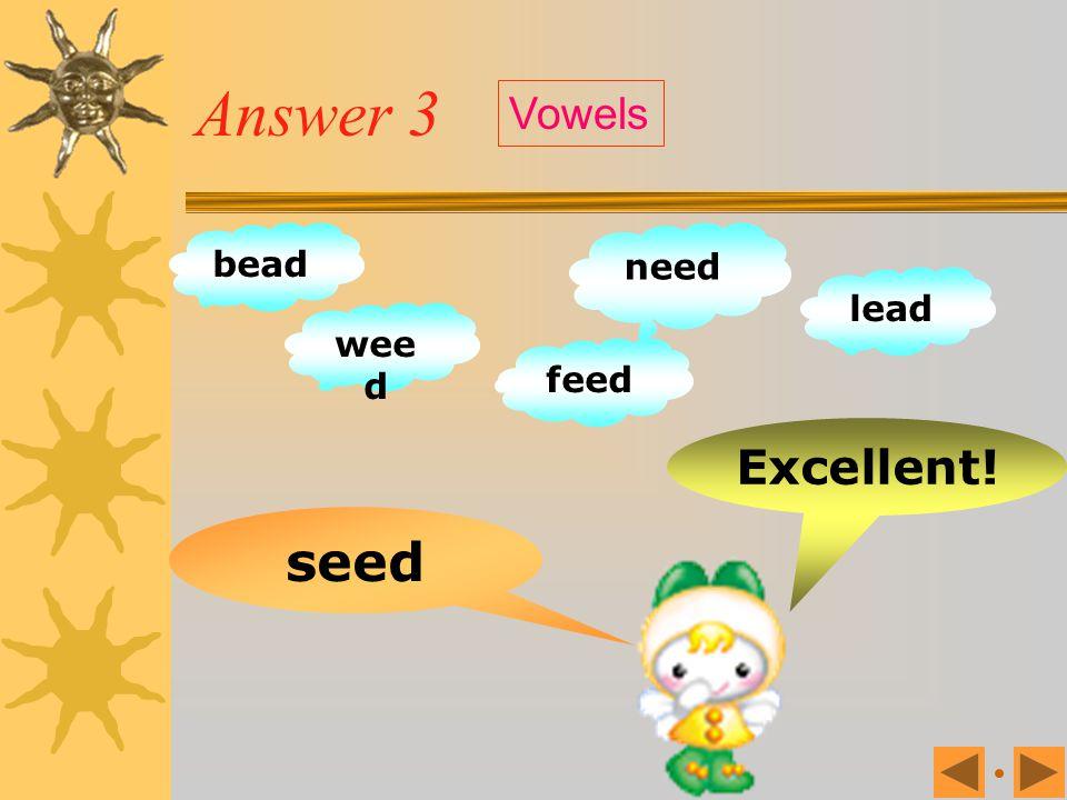 Exercise 3 sheep bead wee d need lead feed sellseed Vowels