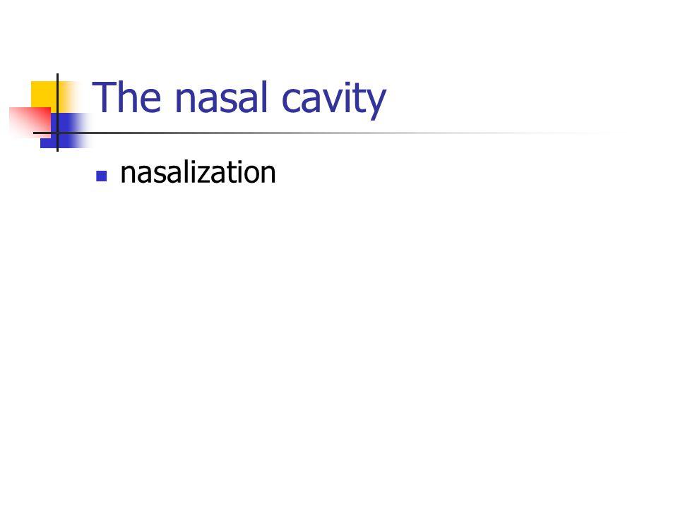 The nasal cavity nasalization