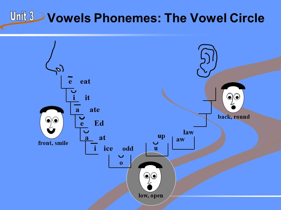 Vowels Phonemes: The Vowel Circle front, smile back, round iice low, open eeat eEd aat iit aate u up odd aw law o