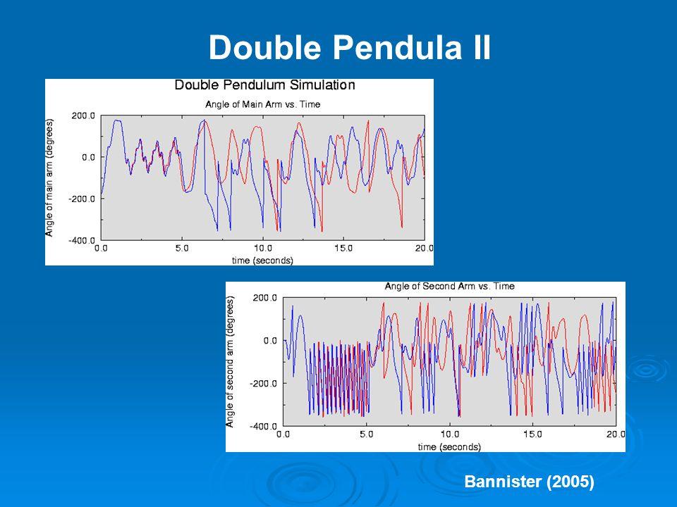 Double Pendula II Bannister (2005)
