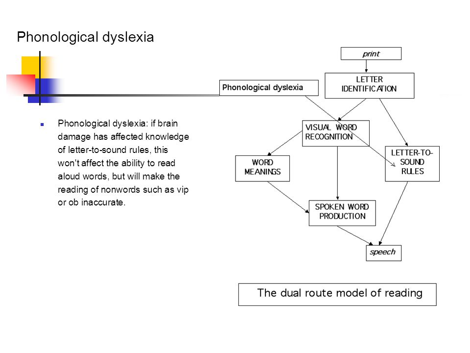 Phonological dyslexia Phonological dyslexia: if brain damage has affected knowledge of letter-to-sound rules, this won t affect the ability to read aloud words, but will make the reading of nonwords such as vip or ob inaccurate.