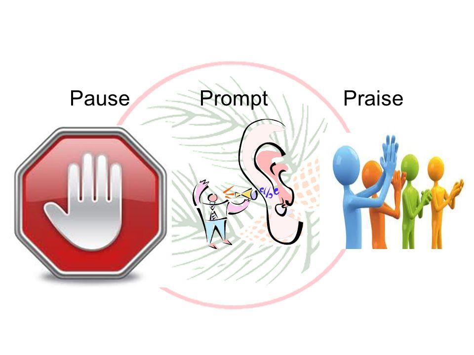 Pause Prompt Praise