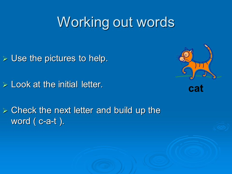 Working out words  Use the pictures to help.  Look at the initial letter.  Check the next letter and build up the word ( c-a-t ). cat