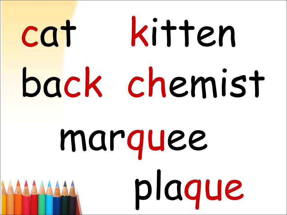catkitten backchemist marquee plaque