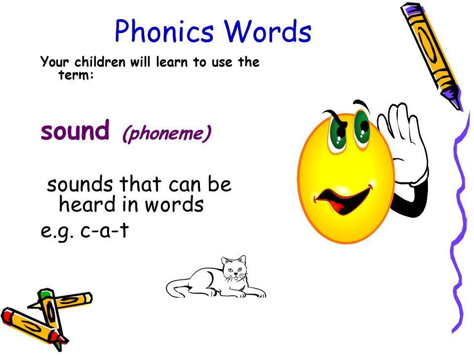 Phonics Words Your children will learn to use the term: sound (phoneme) sounds that can be heard in words e.g. c-a-t