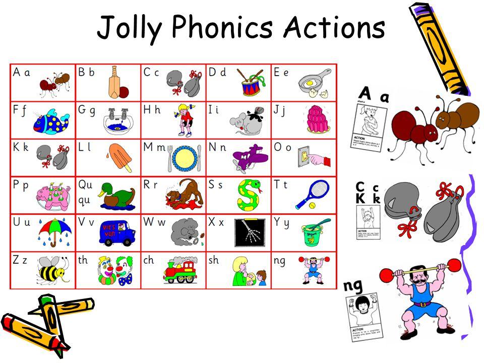 The 44 phonemes s/ssatpinmdgo c/ k/ck eurhbf/ffl/lljvwx yz/zzquchsh voiced & unvoiced th ngaieeighoa short oo long oo arorurowoiearairureer