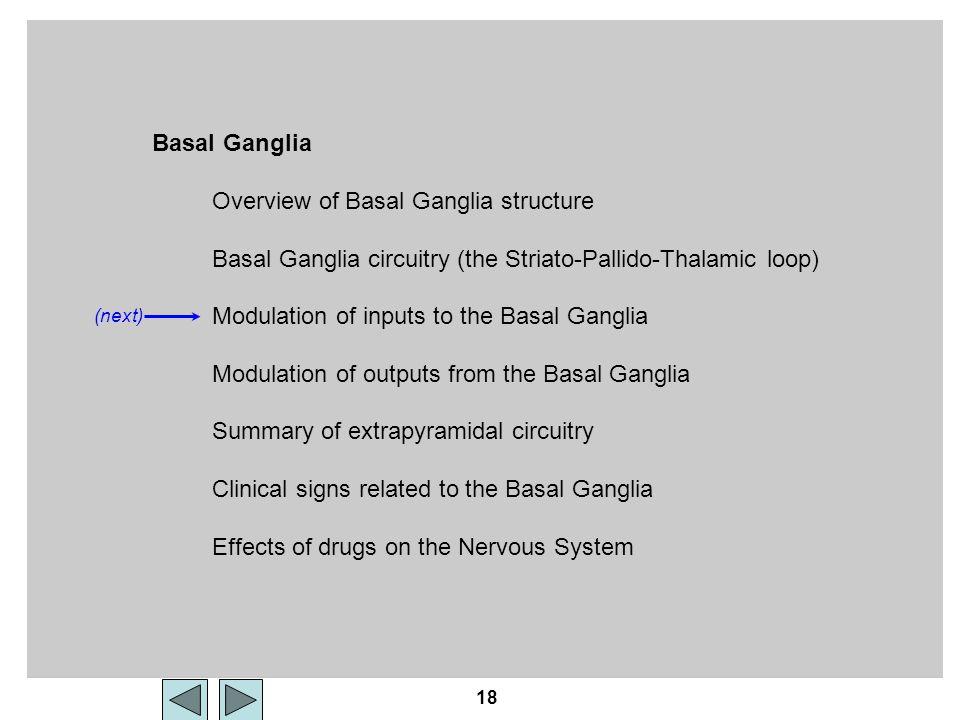 18 Basal Ganglia Overview of Basal Ganglia structure Basal Ganglia circuitry (the Striato-Pallido-Thalamic loop) Modulation of inputs to the Basal Gan