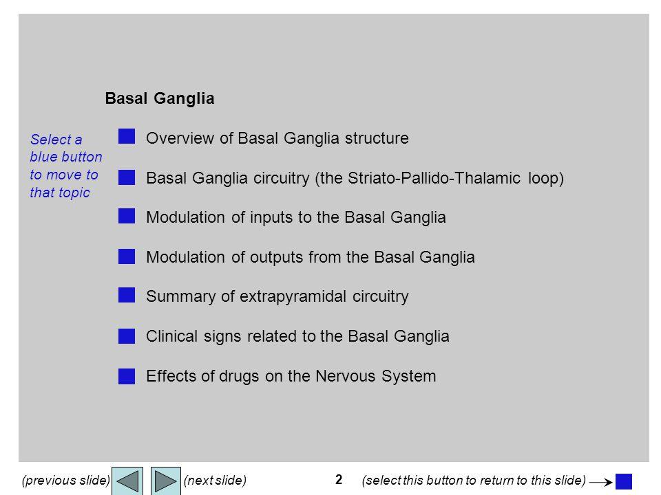 2 Basal Ganglia menu Basal Ganglia Overview of Basal Ganglia structure Basal Ganglia circuitry (the Striato-Pallido-Thalamic loop) Modulation of input