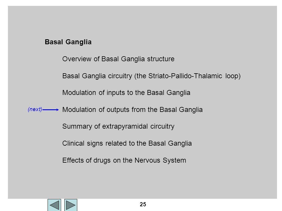 25 Basal Ganglia Overview of Basal Ganglia structure Basal Ganglia circuitry (the Striato-Pallido-Thalamic loop) Modulation of inputs to the Basal Gan