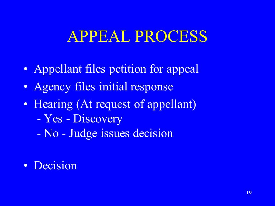 19 APPEAL PROCESS Appellant files petition for appeal Agency files initial response Hearing (At request of appellant) - Yes - Discovery - No - Judge issues decision Decision