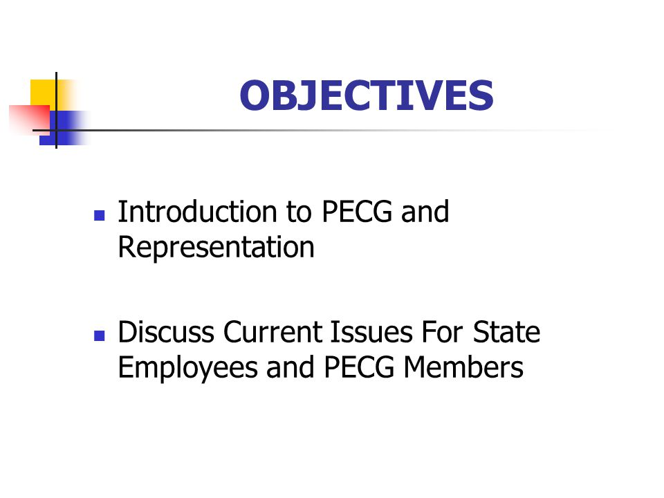 PECG's HISTORY Formed in 1963 to Represent the Occupational/Professional Interests of State Engineers Non-profit Benefit Corp.