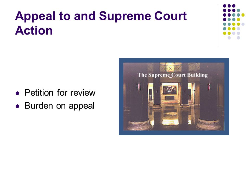 Appeal to and Supreme Court Action Petition for review Burden on appeal