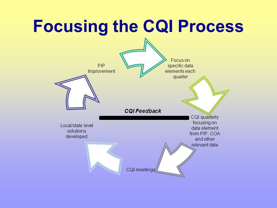 CQI, the PIP and COA Best Practice CQI PIP COA
