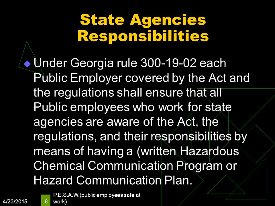 State Agencies Responsibilities  Under Georgia rule 300-19-02 each Public Employer covered by the Act and the regulations shall ensure that all Publi