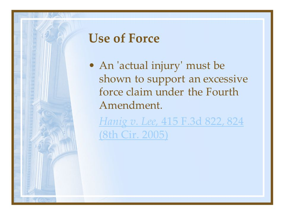 Use of Force An actual injury must be shown to support an excessive force claim under the Fourth Amendment.