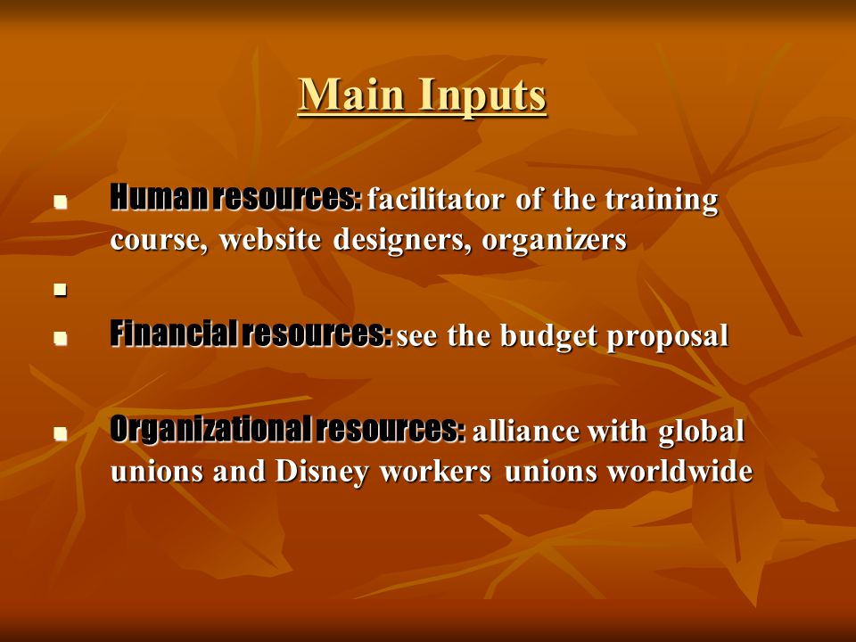 Main Inputs Human resources: facilitator of the training course, website designers, organizers Human resources: facilitator of the training course, we