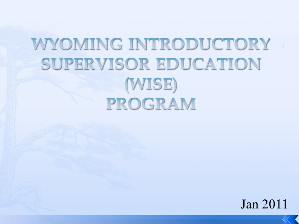  WISE was created in response to a Legislative Service Office (LSO) audit from December 2006.