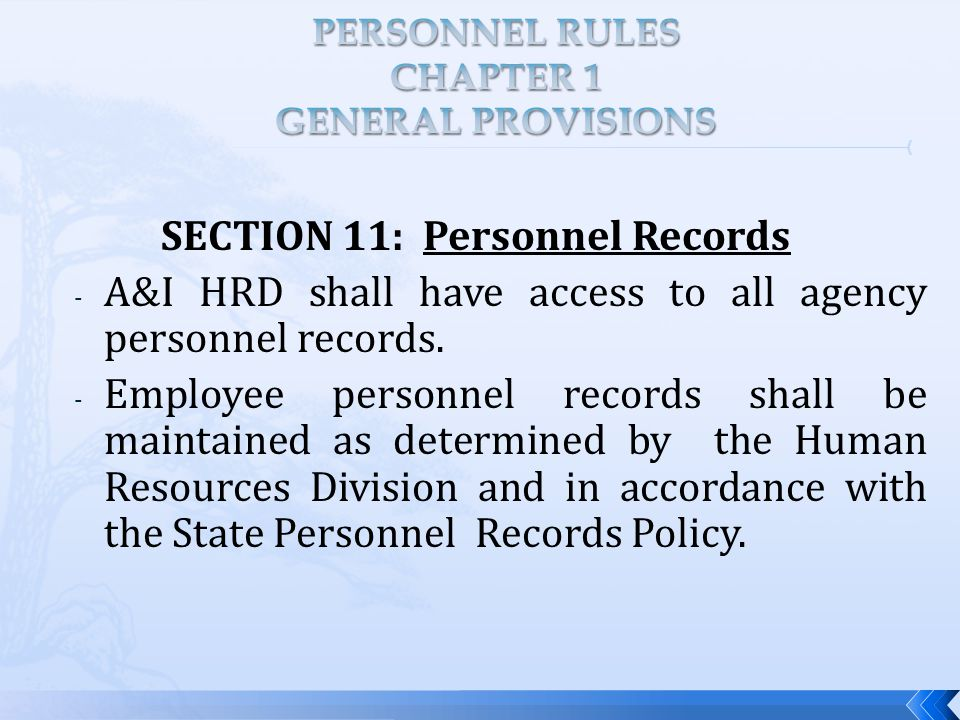 SECTION 11: Personnel Records - A&I HRD shall have access to all agency personnel records.