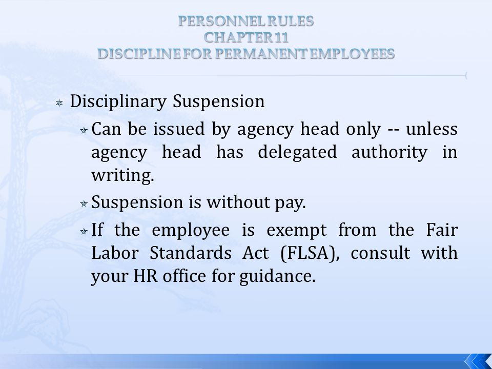  Disciplinary Suspension  Can be issued by agency head only -- unless agency head has delegated authority in writing.