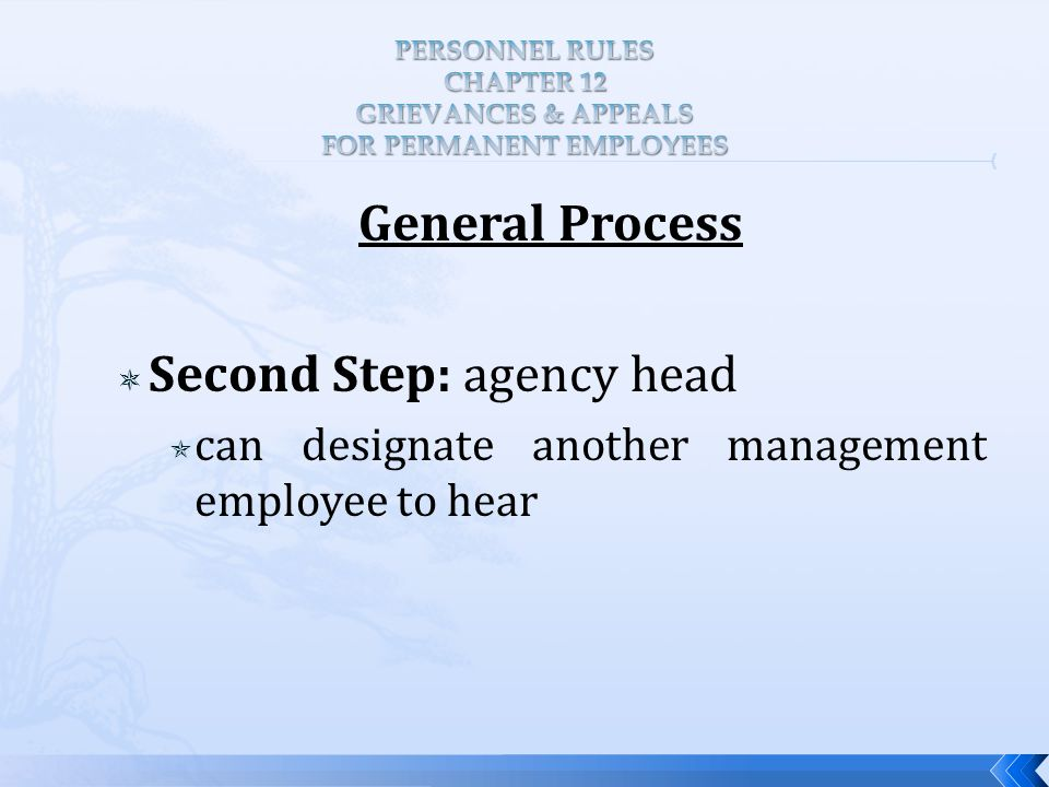 General Process  Second Step: agency head  can designate another management employee to hear