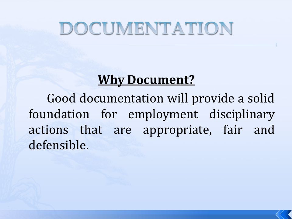 Why Document.