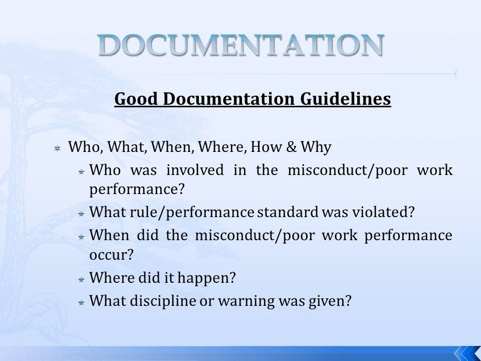 Good Documentation Guidelines  Who, What, When, Where, How & Why  Who was involved in the misconduct/poor work performance.