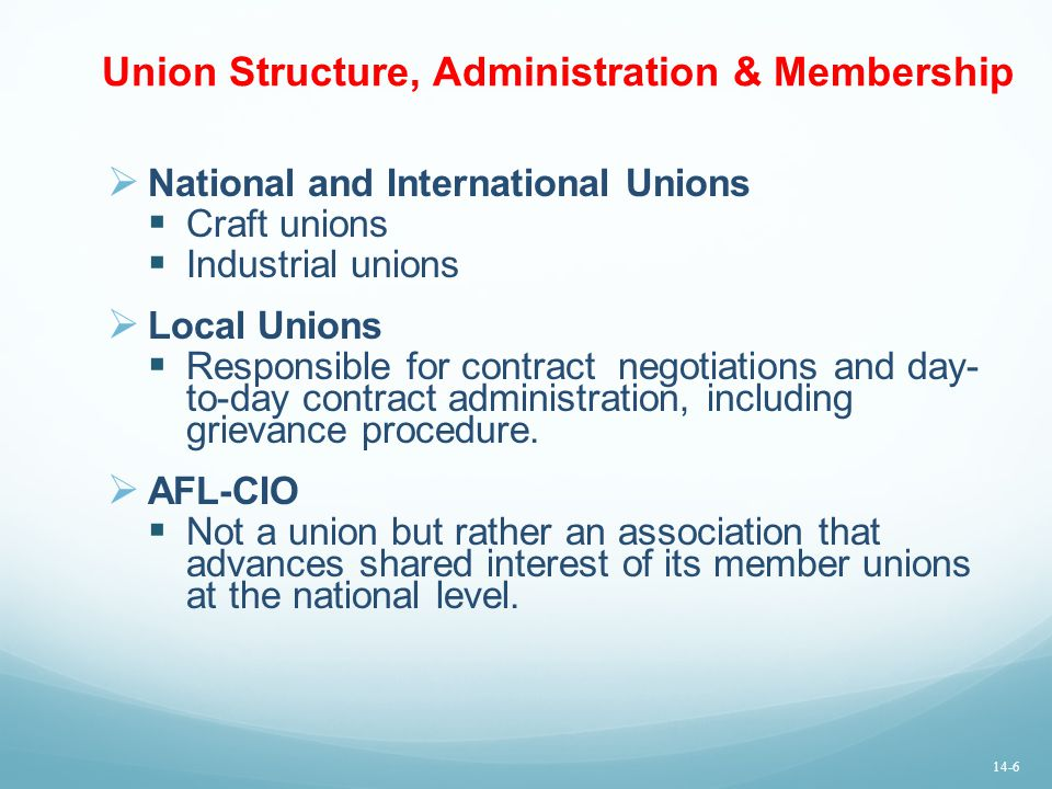 Union Structure, Administration & Membership  National and International Unions  Craft unions  Industrial unions  Local Unions  Responsible for c