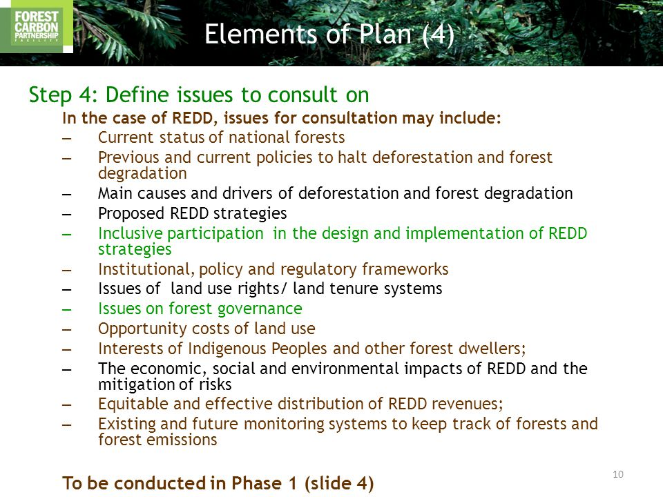 Step 4: Define issues to consult on In the case of REDD, issues for consultation may include: – Current status of national forests – Previous and current policies to halt deforestation and forest degradation – Main causes and drivers of deforestation and forest degradation – Proposed REDD strategies – Inclusive participation in the design and implementation of REDD strategies – Institutional, policy and regulatory frameworks – Issues of land use rights/ land tenure systems – Issues on forest governance – Opportunity costs of land use – Interests of Indigenous Peoples and other forest dwellers; – The economic, social and environmental impacts of REDD and the mitigation of risks – Equitable and effective distribution of REDD revenues; – Existing and future monitoring systems to keep track of forests and forest emissions To be conducted in Phase 1 (slide 4) Elements of Plan (4) 10