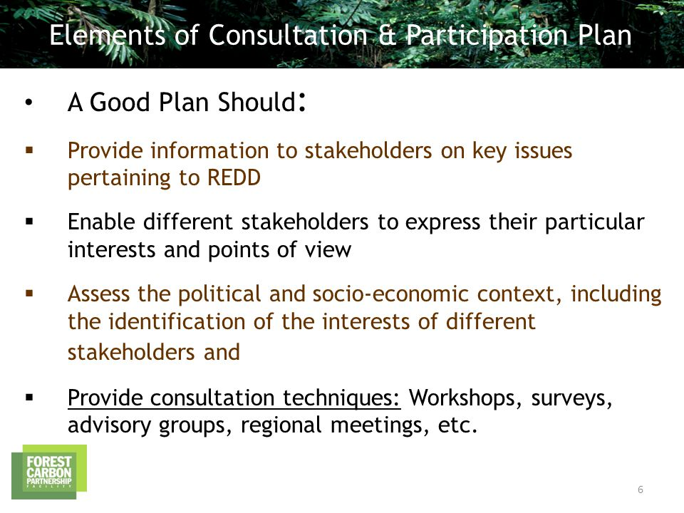 A Good Plan Should :  Provide information to stakeholders on key issues pertaining to REDD  Enable different stakeholders to express their particular interests and points of view  Assess the political and socio-economic context, including the identification of the interests of different stakeholders and  Provide consultation techniques: Workshops, surveys, advisory groups, regional meetings, etc.