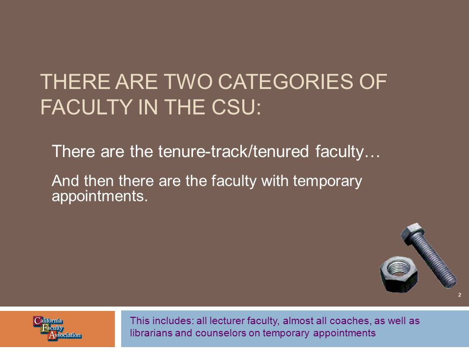 THERE ARE TWO CATEGORIES OF FACULTY IN THE CSU: There are the tenure-track/tenured faculty… And then there are the faculty with temporary appointments.