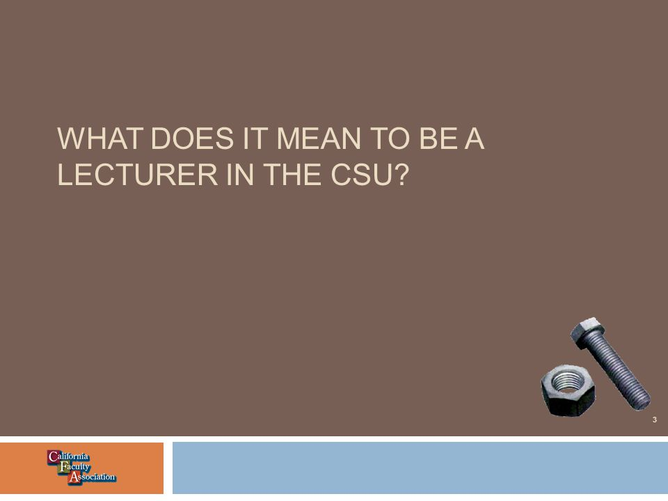 WHAT DOES IT MEAN TO BE A LECTURER IN THE CSU 3