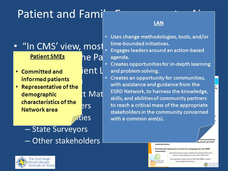 Patient and Family Engagement – Aim 1 In CMS' view, most Network activities will be enhanced by the Patient's voice Establish a Patient Learning and Action Network (LAN) – Patient Subject Matter Experts – Family members – Dialysis Facilities – State Surveyors – Other stakeholders Patient SMEs Committed and informed patients Representative of the demographic characteristics of the Network area LAN Uses change methodologies, tools, and/or time-bounded initiatives.