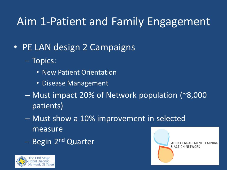 Aim 1-Patient and Family Engagement PE LAN design 2 Campaigns – Topics: New Patient Orientation Disease Management – Must impact 20% of Network population (~8,000 patients) – Must show a 10% improvement in selected measure – Begin 2 nd Quarter