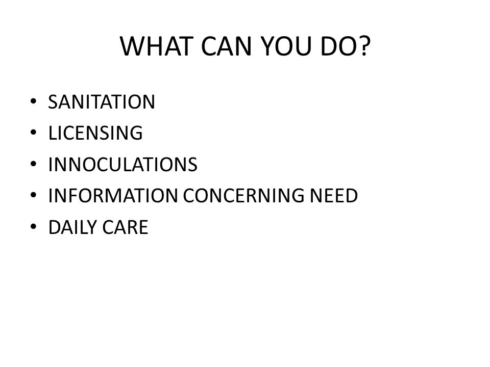 WHAT CAN YOU DO SANITATION LICENSING INNOCULATIONS INFORMATION CONCERNING NEED DAILY CARE