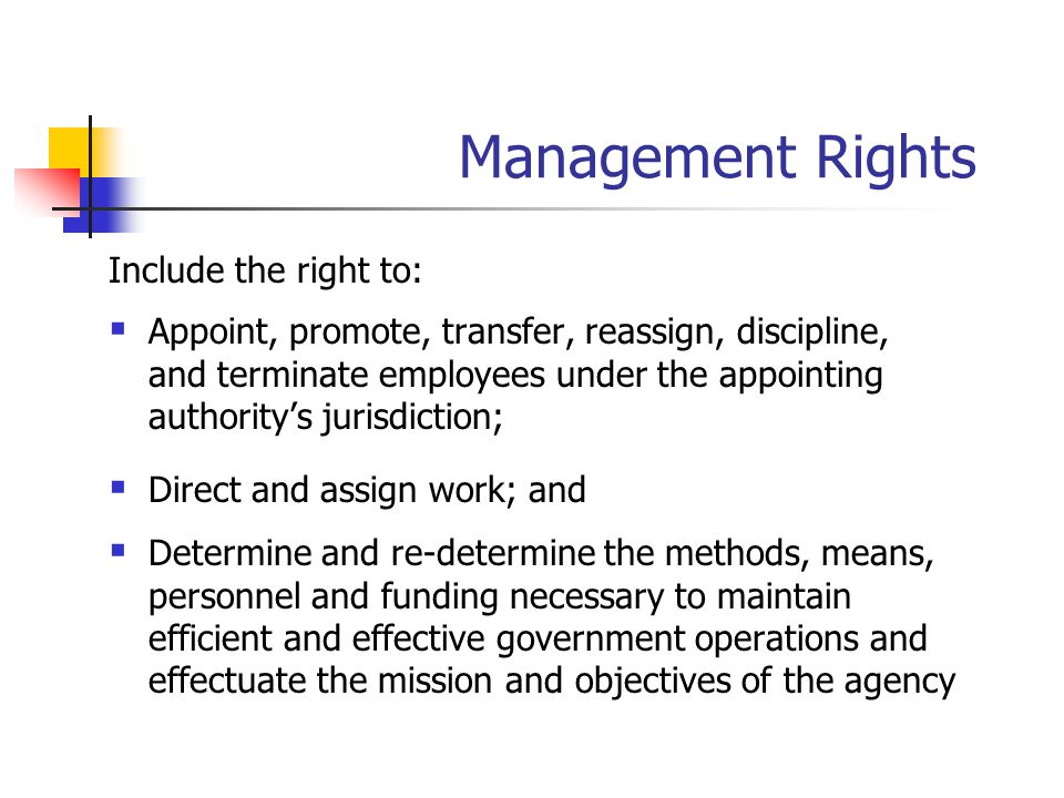 Management Rights Include the right to:  Appoint, promote, transfer, reassign, discipline, and terminate employees under the appointing authority's j