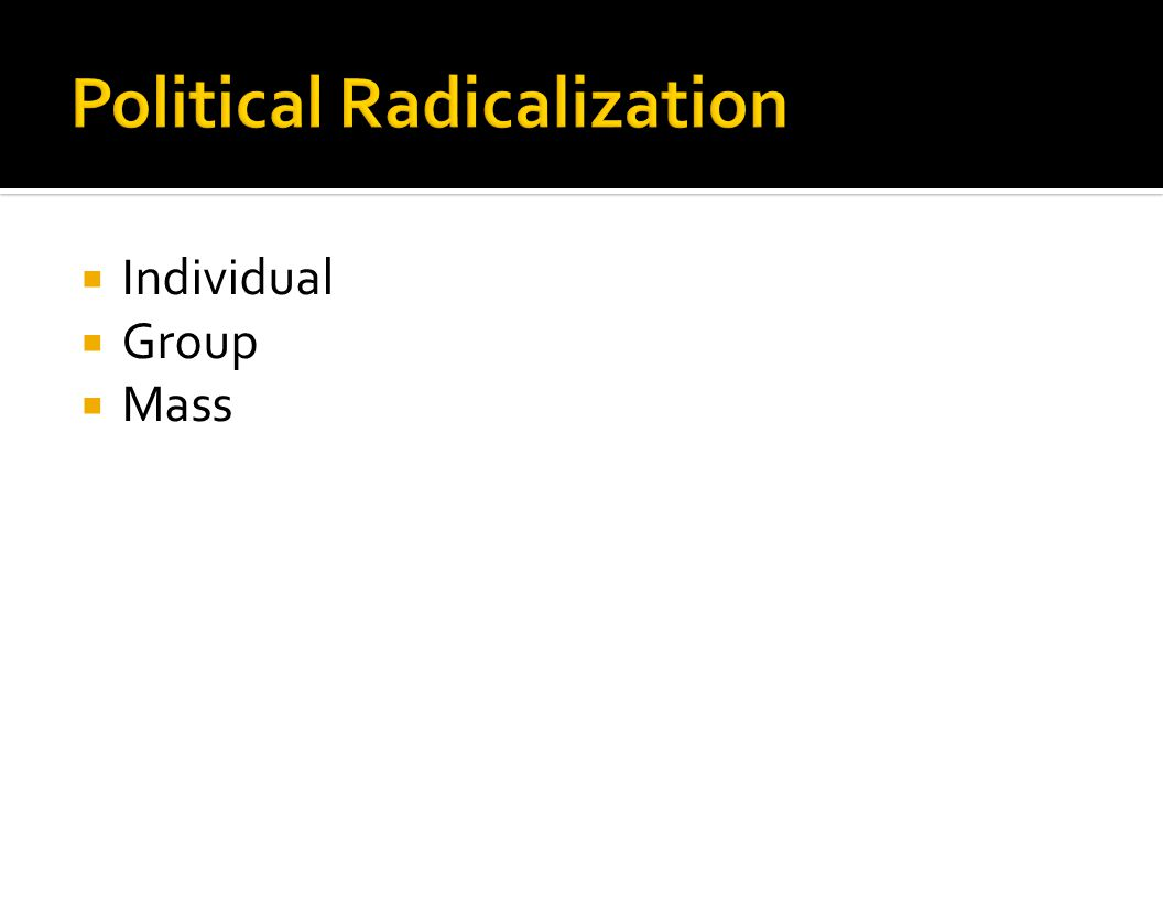 How does a government impact the radicalization process at the individual, group and mass levels?