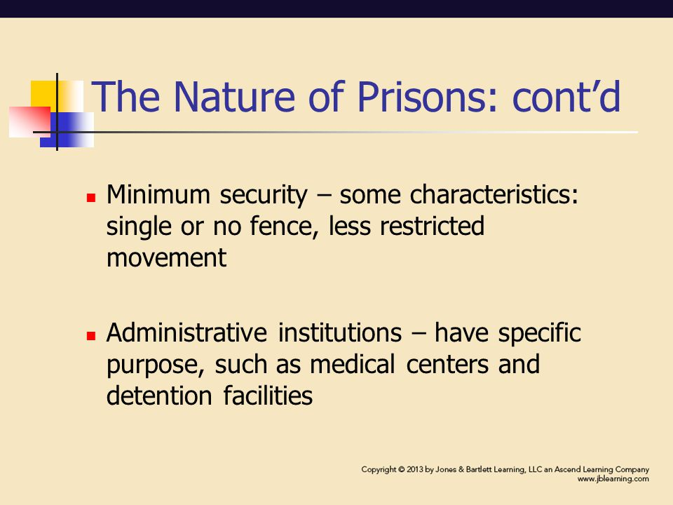 Prison Litigation Reform Act (PLRA): cont'd Porter v.