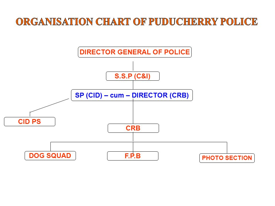 DIRECTOR GENERAL OF POLICE CID PS SP (CID) – cum – DIRECTOR (CRB) S.S.P (C&I) CRB F.P.B DOG SQUAD PHOTO SECTION