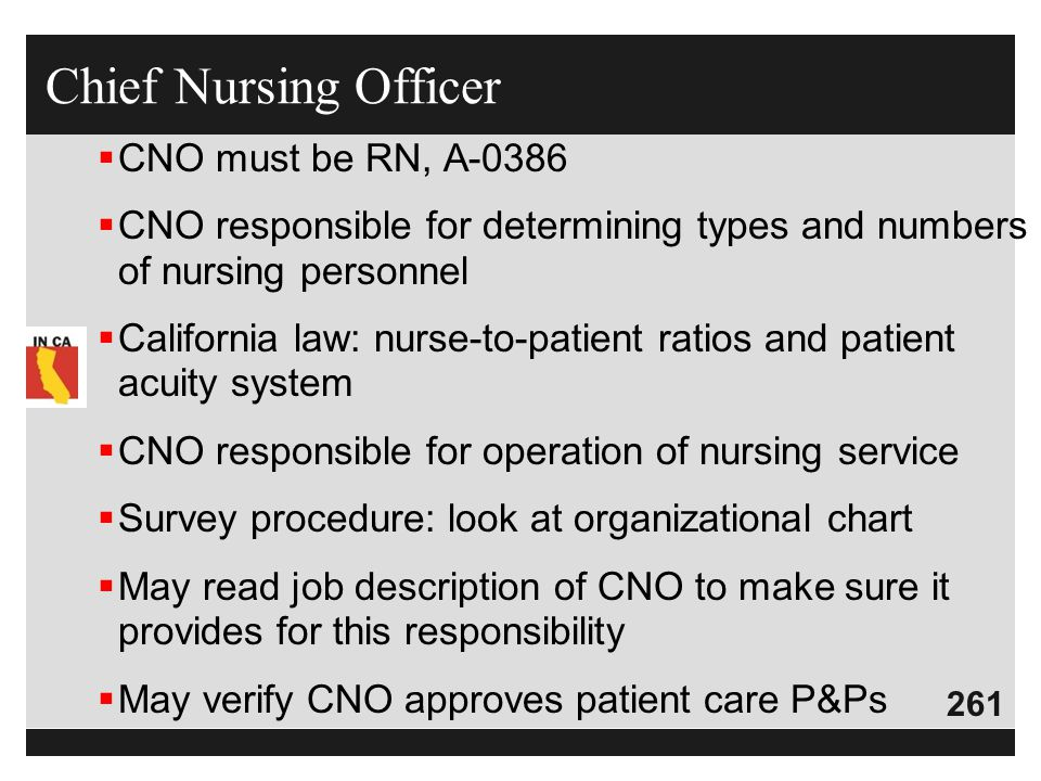 261  CNO must be RN, A-0386  CNO responsible for determining types and numbers of nursing personnel  California law: nurse-to-patient ratios and pa