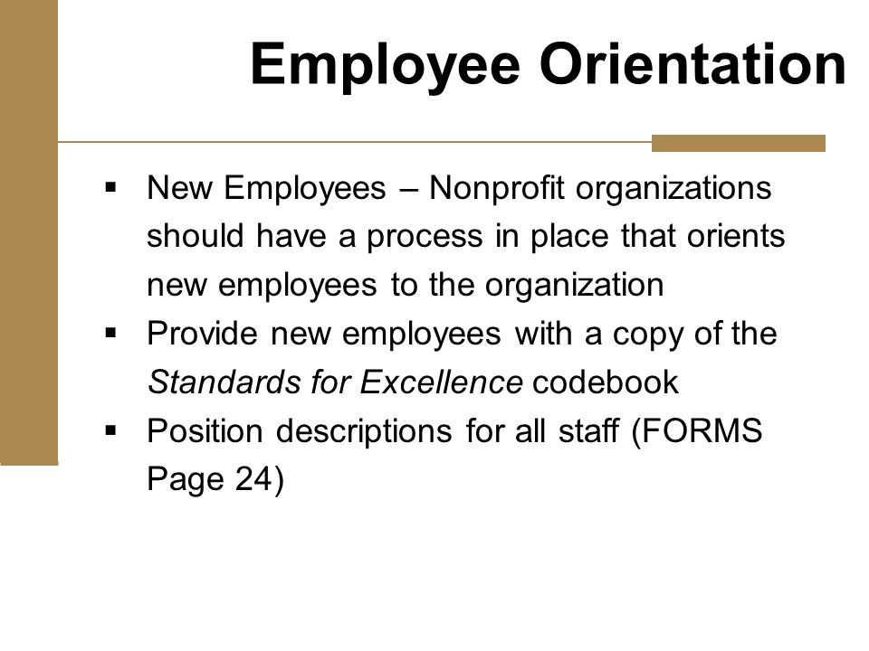  New Employees – Nonprofit organizations should have a process in place that orients new employees to the organization  Provide new employees with a copy of the Standards for Excellence codebook  Position descriptions for all staff (FORMS Page 24) Employee Orientation