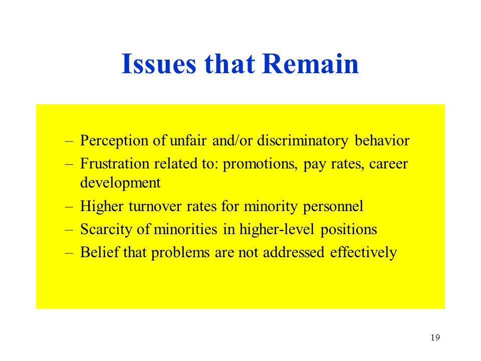 19 Issues that Remain –Perception of unfair and/or discriminatory behavior –Frustration related to: promotions, pay rates, career development –Higher turnover rates for minority personnel –Scarcity of minorities in higher-level positions –Belief that problems are not addressed effectively