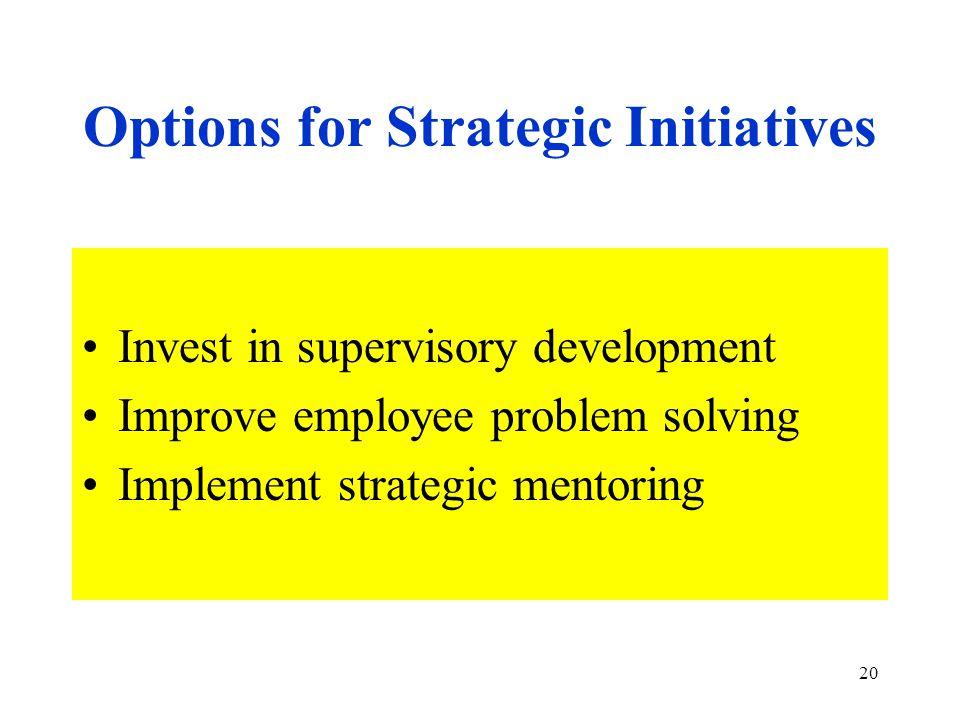 20 Options for Strategic Initiatives Invest in supervisory development Improve employee problem solving Implement strategic mentoring