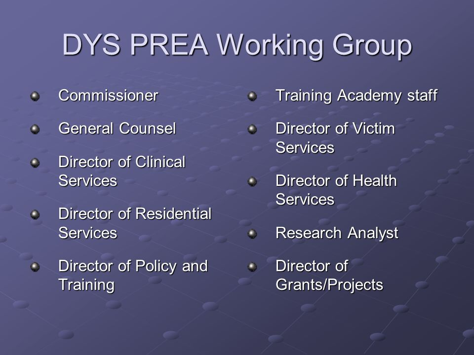 DYS PREA Working Group Commissioner General Counsel Director of Clinical Services Director of Residential Services Director of Policy and Training Training Academy staff Director of Victim Services Director of Health Services Research Analyst Director of Grants/Projects