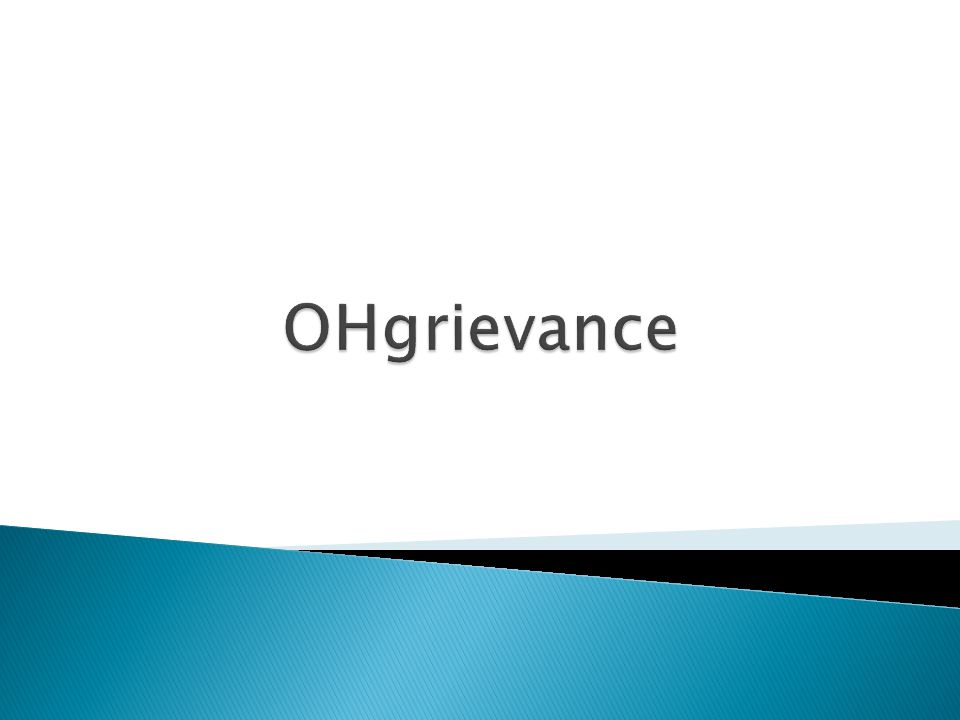If Grievance Type selected was Issue - must enter sub-type  Issue – must enter type  Other  Layoff  Non-selection  Union Leave Is this grievance a Class Action.
