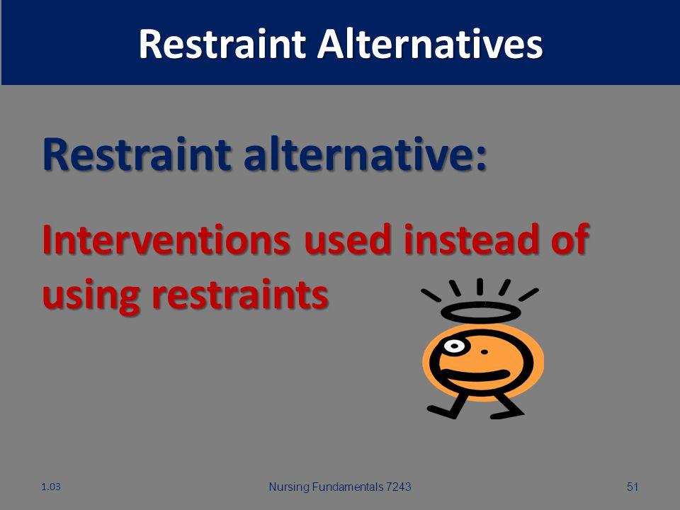 Restraint Alternatives Nursing Fundamentals 7243501.03