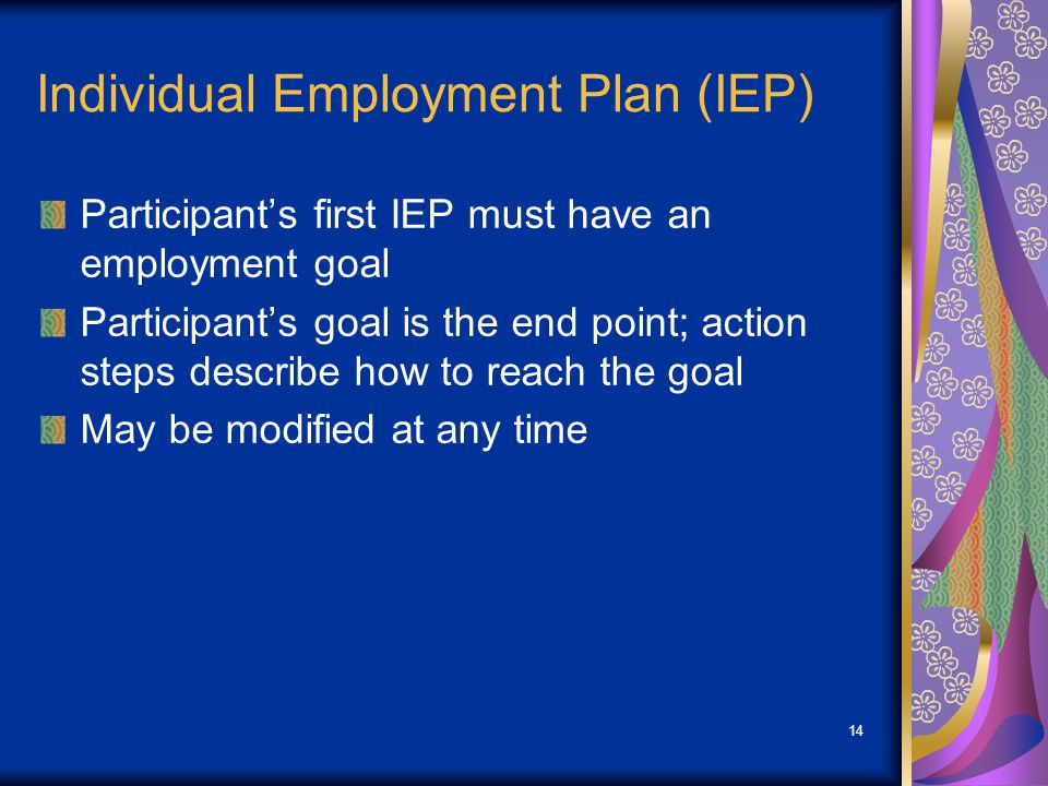 14 Individual Employment Plan (IEP) Participant's first IEP must have an employment goal Participant's goal is the end point; action steps describe ho