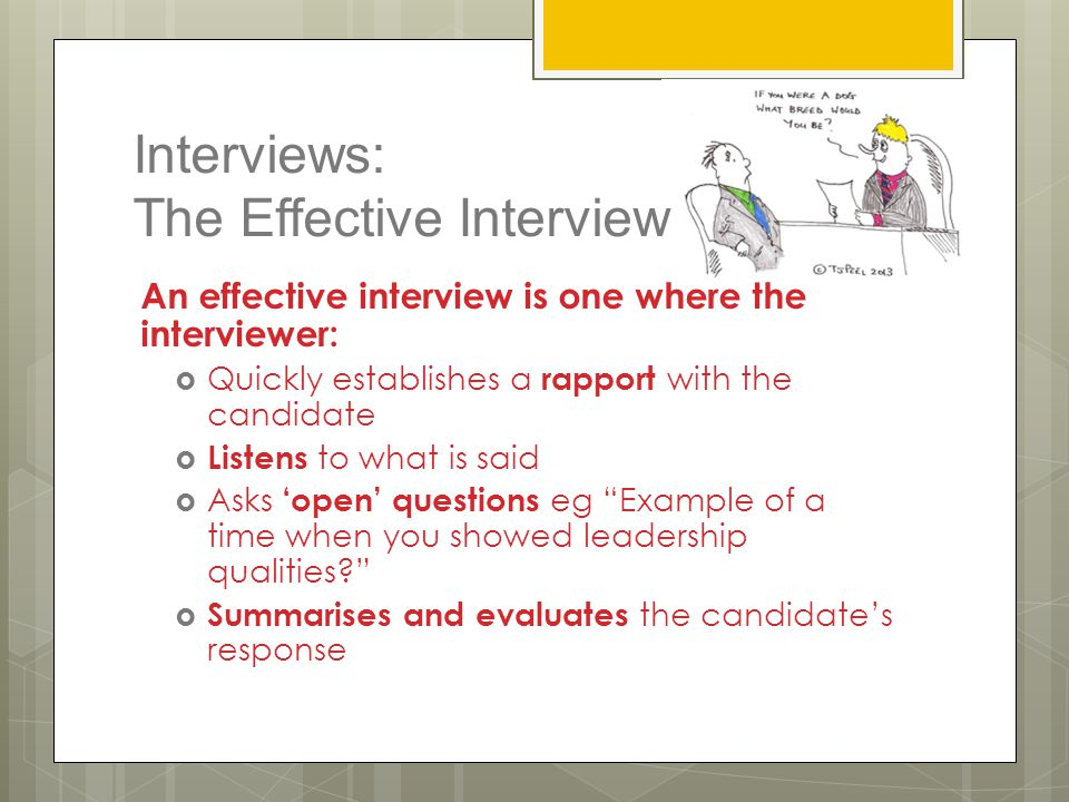Interviews: The Effective Interview An effective interview is one where the interviewer:  Quickly establishes a rapport with the candidate  Listens